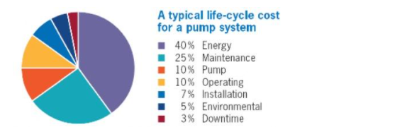 Typical Life-Cycle Cost For A Pump System Infographic